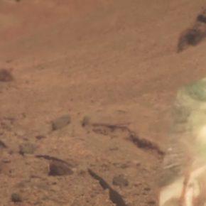 Flying Lotus - Phantasm (MUSIC VIDEO.)