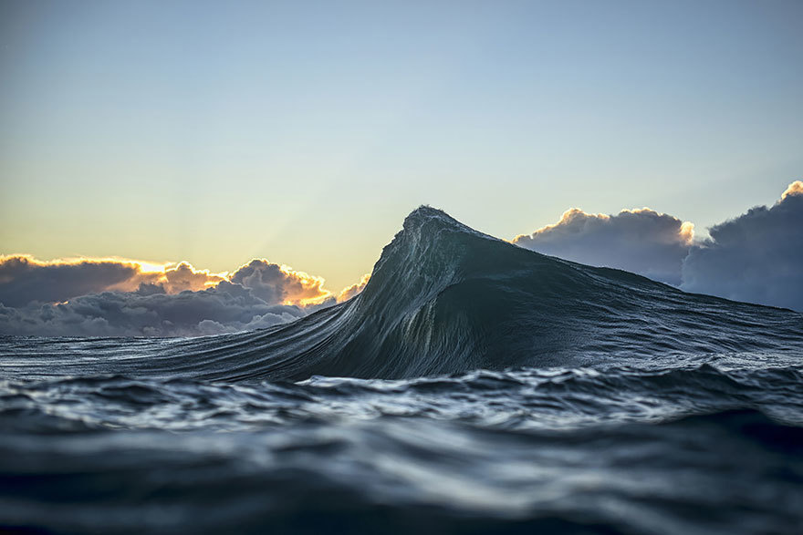 faux society - ray collins -2