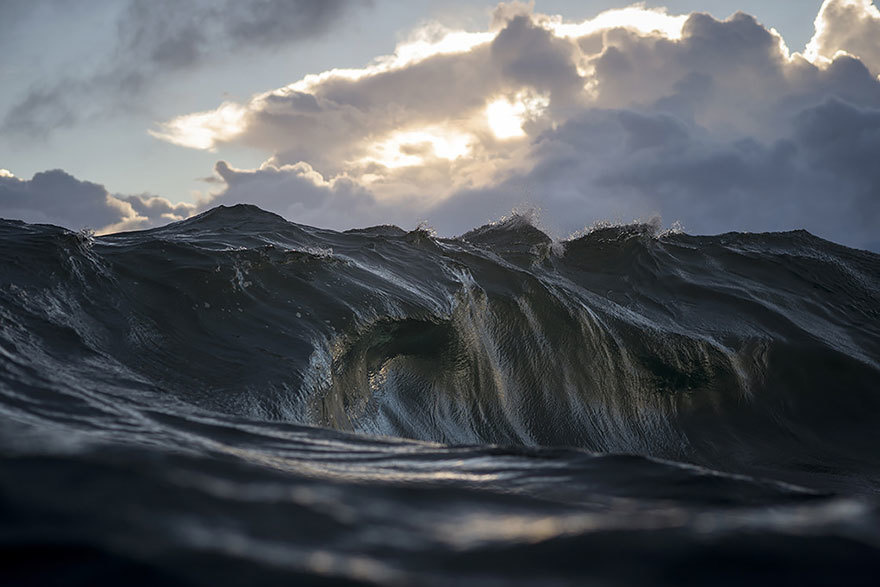 faux society - ray collins -6