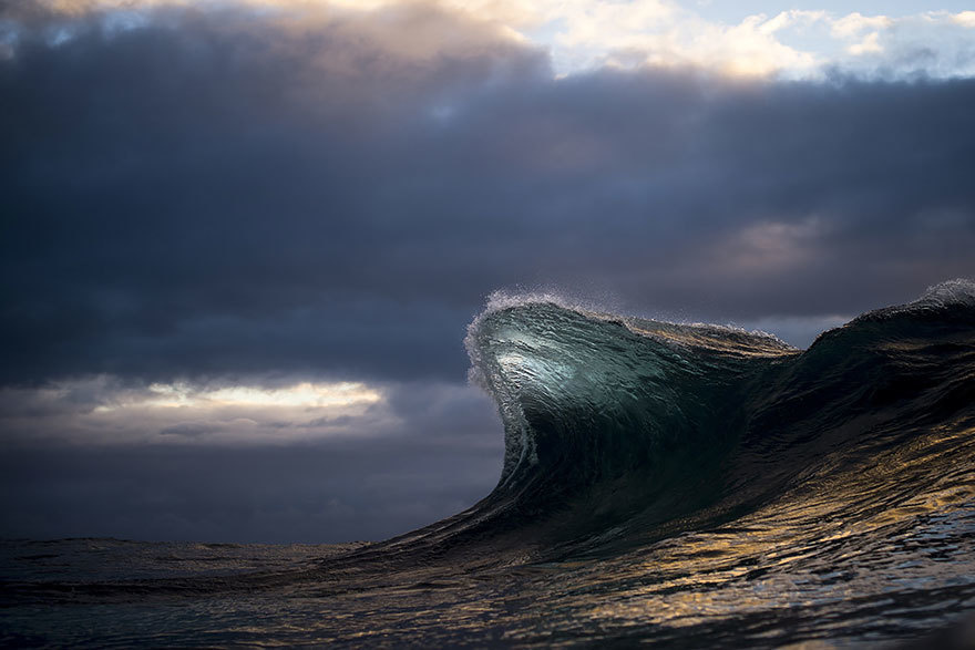 faux society - ray collins -7