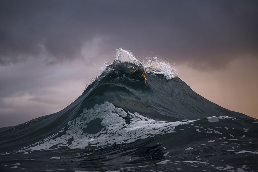 faux society - ray collins -8